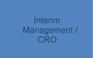 Interim Managment / CRO